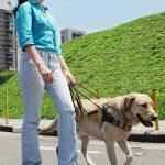 Foto em área externa, de pessoa com deficiencia visual com cão-guia.